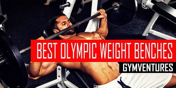 5 Best Olympic Weight Benches For Your Home Gym