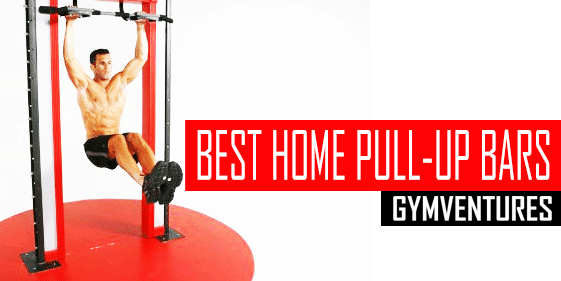 10 Best Doorway Pull-Up Bars (& User Guide)