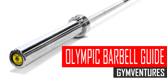 Buying the Best Olympic Barbells (Guide & 24 Recommendations)