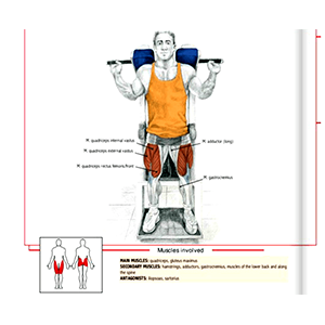 Hack Squat Machine Exercises Effecting Muscle Groups Workout Equipment Info