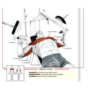 Hammer Strength Machine Muscle Groups Worked
