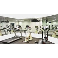Troy System 48x 72 Rectangle Mirasafe Home Gym Mirror Kit