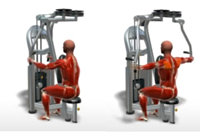 Rear Delt Fly (shoulders) Machine Exercise Alternatives