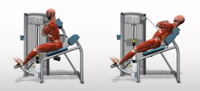 Back Extension Machine Lower Back