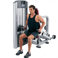 Tricep Pushdowns (triceps) Workout Machine