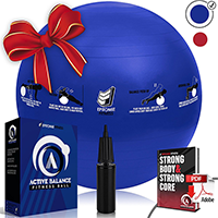 Active Balance Fitness Ball By Epitome Fitness
