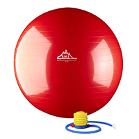 Black Mountain 2000lbs Static Strength Exercise Ball