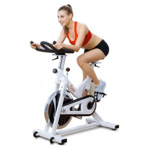 sf-b1110s-indoor-cycling-bike